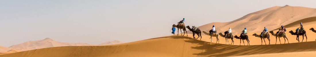 Luxury marrakech tour